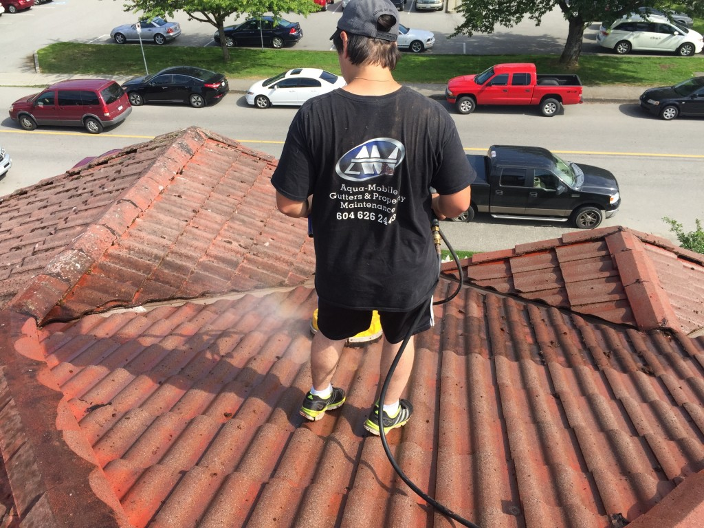 roof moss cleaning